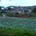 Curup-Padang (22 Oktober 2014) (17)