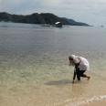 Pulau Cingkuak, Pessel