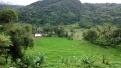 Palembayan, Kab. Agam-Sumbar