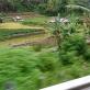 Lokasi Banjir Bandang, Palembayan-Bukittinggi (25 November 2015)(13)