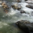 Sungai di sekitar Jembatan Akar