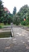 Kebun Raya Bogor With Meican & Weni (18 Juni 2015) (126)