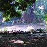 Kebun Raya Bogor With Meican & Weni (18 Juni 2015) (72)