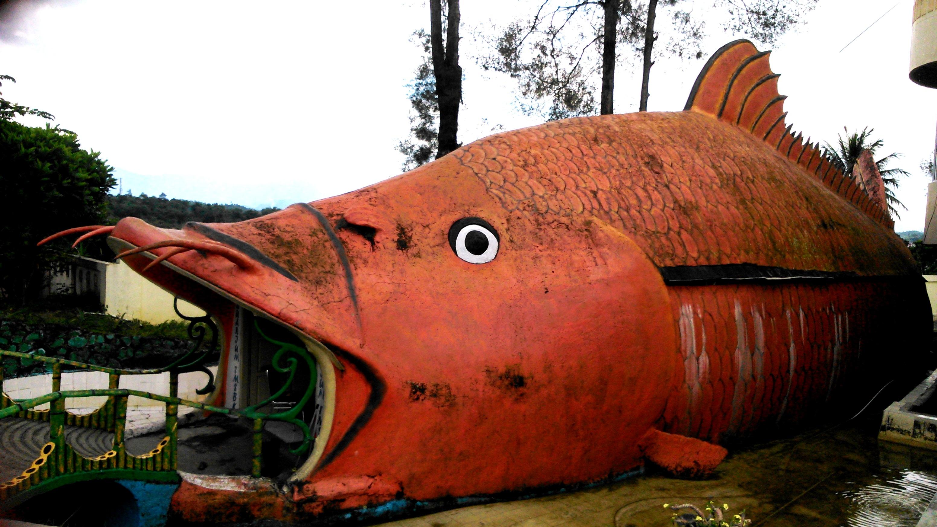 Aquarium Kebun Binatang Kinantan - Bukittinggi