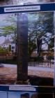 Museum Gempa & Bencana Kota Padang (36)