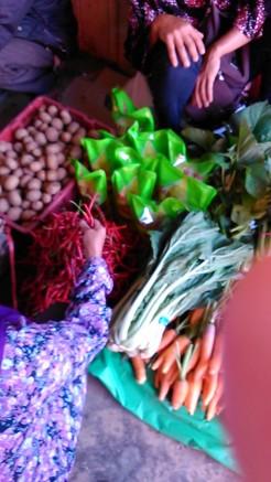 Pakan Pasar Palembayan (25 Juli 2015) (2)
