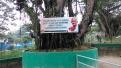 Kebun Binatang Kinantan Bukittinggi (13 September 2015) (1)