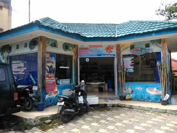 Terapi Ikan Garra Fura Bukittinggi (20 November 2015)(1)